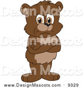 Illustration of a Bear Cub School Mascot with His Arms Crossed by Toons4Biz