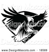 Illustration of a Black and White Bald Eagle Mascot Flying Badge by Chromaco