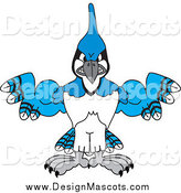 March 6th, 2014: Illustration of a Blue Jay School Mascot Flexing Muscular Wings by Toons4Biz