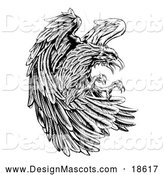Illustration of a Fierce Black and White Eagle Mascot Attacking by AtStockIllustration