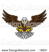 Illustration of a Fierce Swooping Bald Eagle Mascot with Talons Extended, Flying Forward by AtStockIllustration