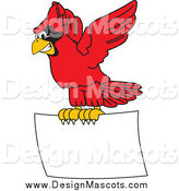Illustration of a Red Cardinal Mascot Flying a Blank Sign by Toons4Biz