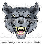 Illustration of a Snarling Gray Wolf Mascot by AtStockIllustration