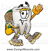 Illustration of a Tooth Mascot Hiking and Waving by Toons4Biz