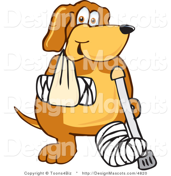 Clipart of a Brown Dog Mascot Cartoon Character with a Broken Arm and Leg - Royalty Free
