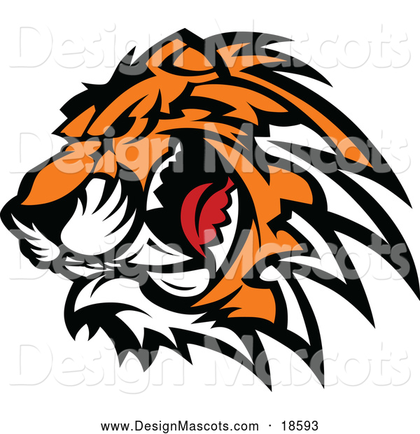 Illustration of a Ferocious Growling Tiger Mascot