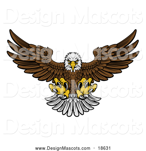 Illustration of a Fierce Swooping Bald Eagle Mascot with Talons Extended, Flying Forward