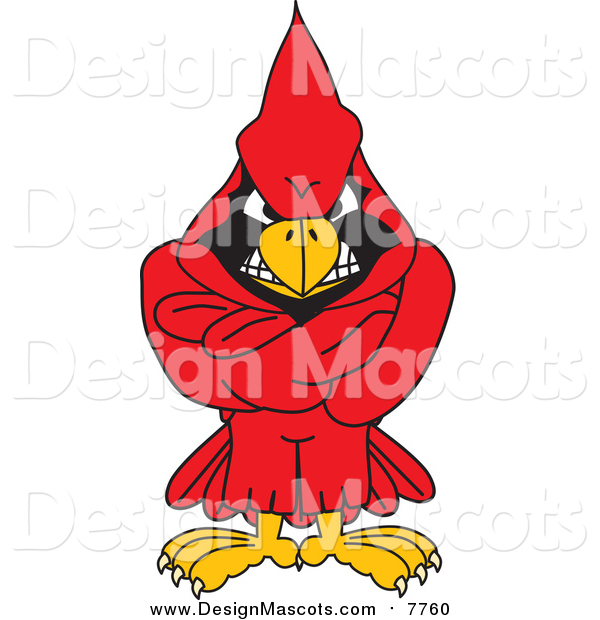 Illustration of a Red Cardinal Mascot with His Arms Crossed