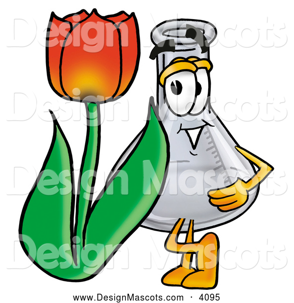 Stock Mascot Cartoon of a Friendly Erlenmeyer Conical Laboratory Flask Beaker Mascot Cartoon Character with a Red Tulip Flower in the Spring