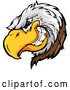 Illustration of a Grinning Bald Eagle Mascot by Chromaco