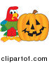 Illustration of a Macaw Parrot Mascot with a Pumpkin by Toons4Biz