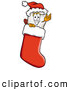 Stock Cartoon of a Tooth Mascot in a Christmas Stocking by Toons4Biz