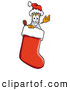 Stock Mascot Cartoon of a Smiling Erlenmeyer Conical Laboratory Flask Beaker Mascot Cartoon Character Wearing a Santa Hat Inside a Red Christmas Stocking by Toons4Biz